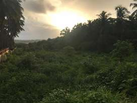 NA PLOT WITH SANAD FOR SALE IN DANGUI COLONY