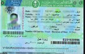 we are providing only azad  visa .