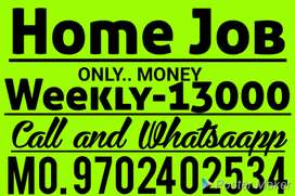 Home Job Good Earning support family