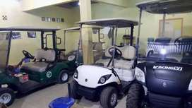Mobil golf listrik 2 penumpang