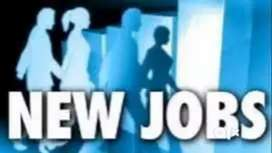Freshers Required Domestic Hindi Bpo Call Center Inbound Voice Process