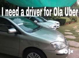 Looking for Ola Uber Drivers from Sangam Vihar South Delhi