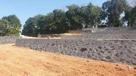 4 and more cent orginal land at kakkanad near vikassvani