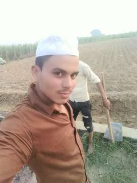 Majdori  the farmer