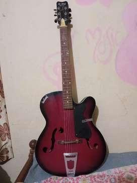 Guitar at reasonable price