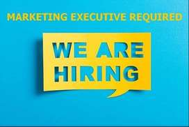 Urgent Vacancy for Plywoods Marketing Executive