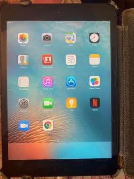Ipad Mini - 16 GB / 2013 Model