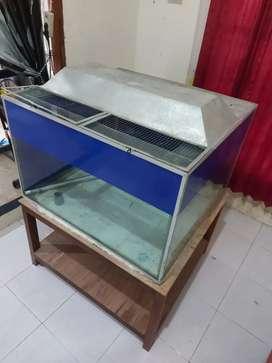 Aquarium kaca tebal 1mx1mx1m kondisi bagus + tutup + meja