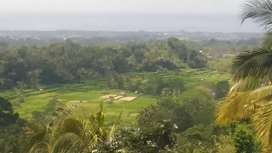 Disewakan tanah/join hottel&villa V nusa penida,gunungA,sawah,laut