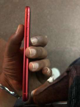 Iphone 11  Red colour