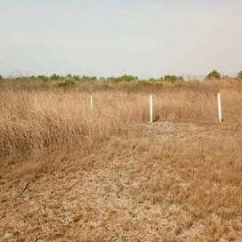 Bungalow plot at near vindhane ranjan pada