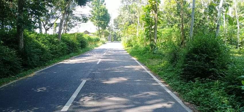 Tanah Murah Borobudur Wanurejo