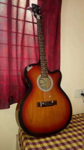 Signature goods guitar with cover in very good condition