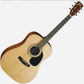Gitar Cort AD810 OP New