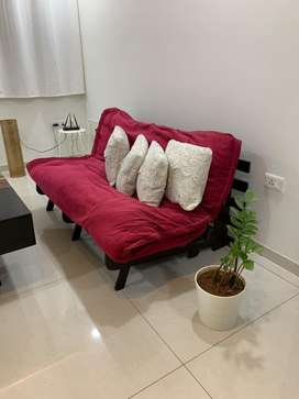 Sofa cum bed Double futon from pepperfry