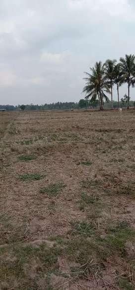 Di jual Tanah sawah 2400m2 SHM