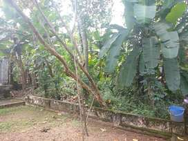 25 cent house plot in changanacherry bypass, Moorkulangara