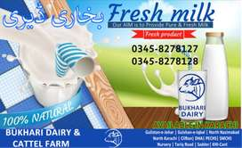 FRESH DAIRY MILK