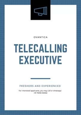 Telecalling Executive