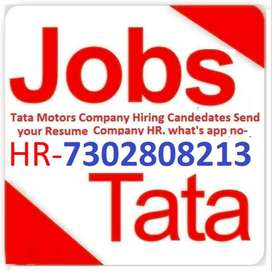 Urgent hiring   Apply Now Company. (HR) what's app no  73028,08213
