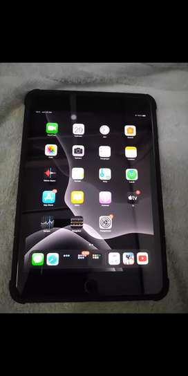 iPad Mini 5 Cellular + Wifi Warna Grey 64 GB