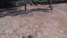 Jual tanah datar