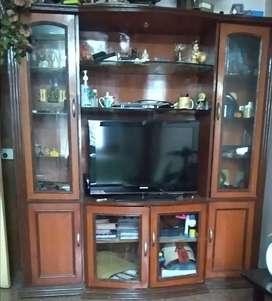 Show case cum TV stand