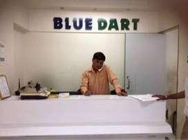 Bluedart jobs