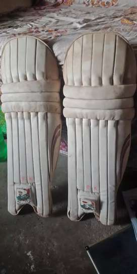 Cricket pad