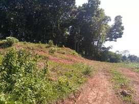 DIJUAL CEPAT , Tanah pekarangan Strategis Pinggir jln Raya,