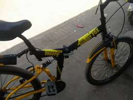Japanese bick for sale