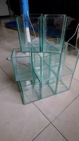 Soliter / quarium cupang 10x10x15 cm