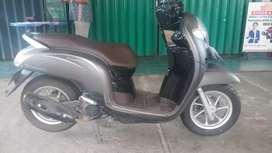 Honda Scoopy Sporty