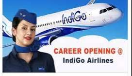 Hiring fresher / Experience job candidates Male/Female both can applyH
