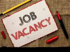 Vacancy for sales person in Lawrence and Mayo India Pvt Ltd.