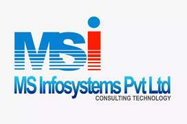 MS Infosystems