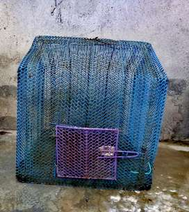 Birds Cage In Good Condition For All Types Of Parrots And Birds...