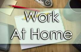 Daily typing work at home for students government approved company