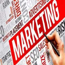 Required Sales Marketing Persons