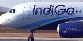 indigo hiring opretor technician ground staff,