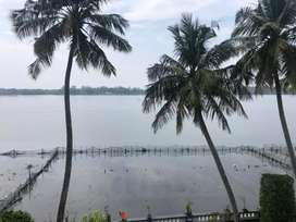 1 BHK fully furnished waterfront in Thevara