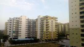 3 bhk very beautifully fully furnished flat in jalandhar heights