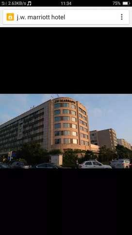 250 boys urgently need in 5* hotels in Delhi and Gurugram