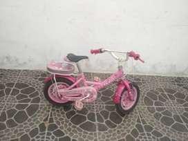 Sepeda anak perempuan family