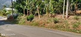 Residential plot for sale.near kattapana town and st.johns hospital