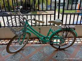 Dijual sepeda santai Polygon