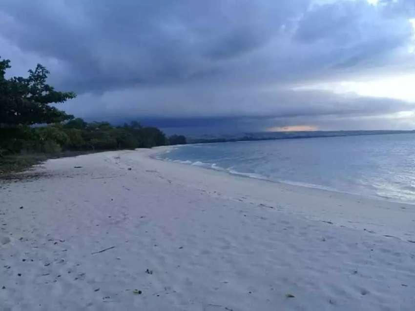 Dijual lahan yang strategis Tanah Loss Pantai Lenang Sumba Tengah NTT 0