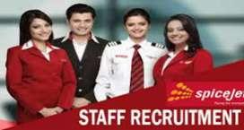 Job reqeired driver, guard, loder, supervisor, for airport job