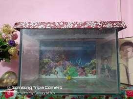 Aquarium 18×22
