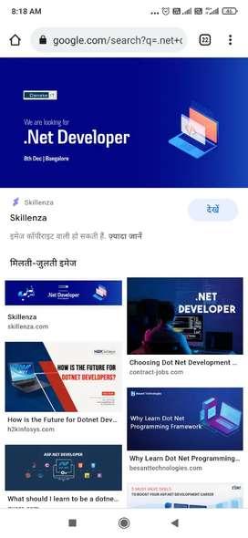 Vb-net, asp-net developer